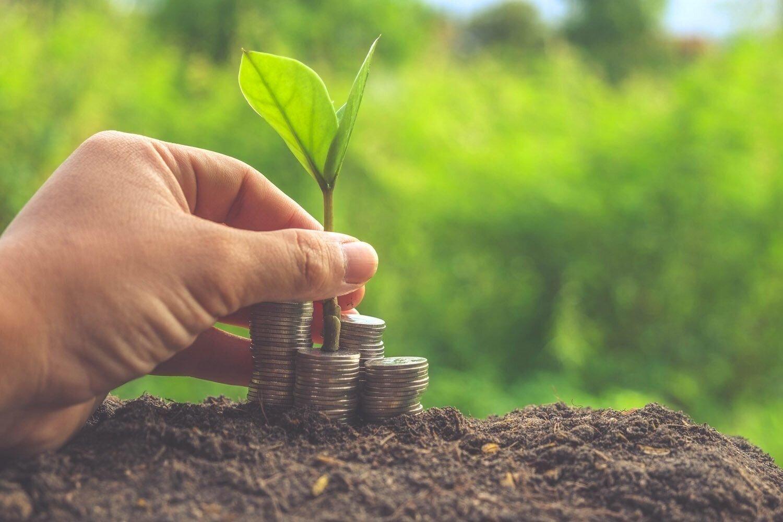 Зачем увеличиать уставный капитал